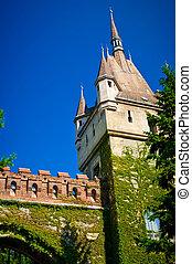Vajdahunyad Castle - The Vajdahunyad Castle in Budapest in...