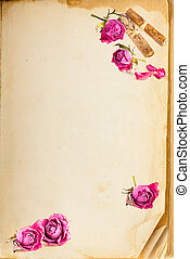 Old book page and vintage pink roses