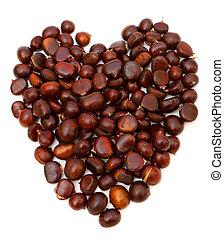 photo of chestnut, close-up, on white background