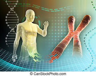Human chromosome - Male figure created by some human...