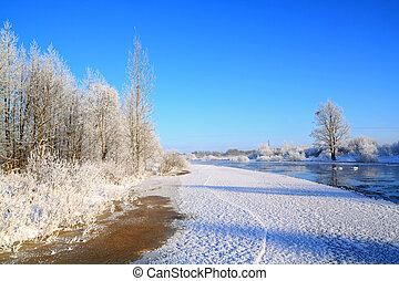 snow bushes on coast river