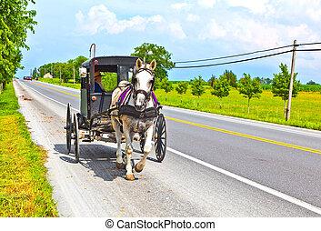 A horse pulling a cart across a beautiful Saskatchewan...