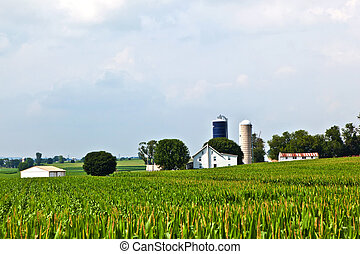 farm house with field and silo
