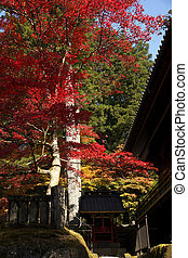 mausoleums of the Tokugawa Shoguns in nikko at autumn with...