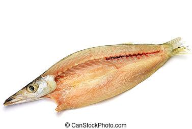 pez,  barracuda, secado