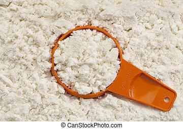 whey protein powder scoop