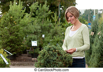 Attractive female purchasing shrub - Portrait of an...