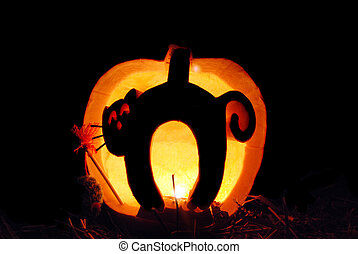 Halloween Cat in pumpkin - Cat carved in a Halloween...