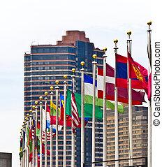 nuevo, ONU, banderas,  York, miembros