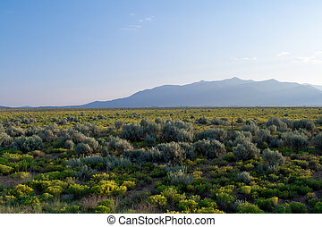 New Mexico High Desert Sangre De Cristo Mountains - Sangre...