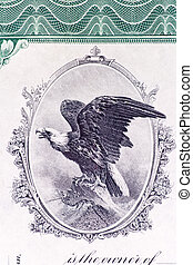 Bald Eagle Engraving Old U.S. Stock Certificate - Close-up...