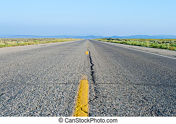 Two Lane Road Crack Flat Desert New Mexico - Road off into...