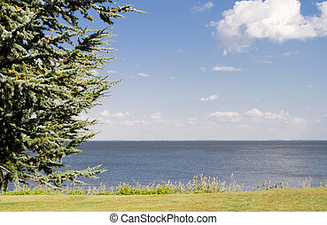 Path and Tree in Front of Chesapeake Bay - Park on the...