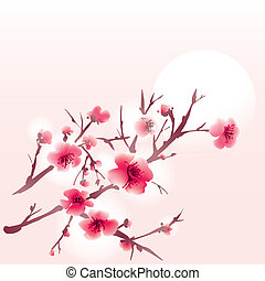 sakura - Sakura blossoms on a pink background