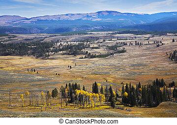 Grandiose landscape in Yellowstone national park