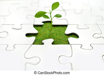 Plant jigsaw - New sprout growing from grass inside a jigsaw...