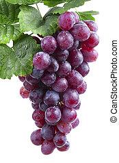 rojo, vino, uva, aislado