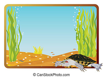 Tortoise - Marine life on background frame with the...