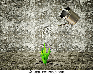 plant - green plants grow out from cracks concrete