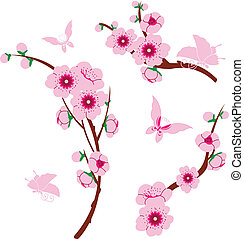 Sakura elements - Vector image of sakura elements and...