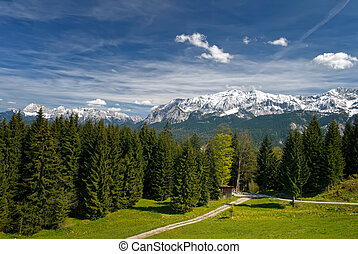 Bavarian Alps - Landscape in the bavarian Alps Mountains and...