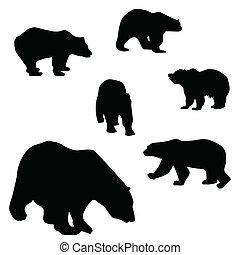 sweet and beautiful bears