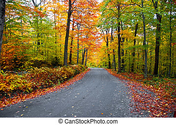 Fall foliage  - Romantic getaway in autumn