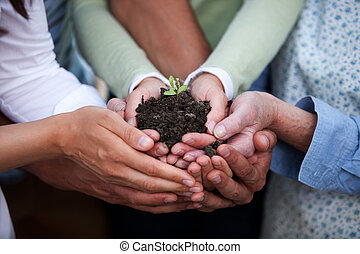 Hands Holding Plant - Group of people of all ages holding a...