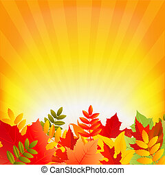 Autumn Background With Sunburst