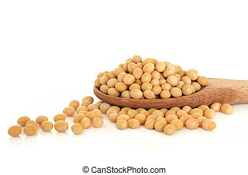 Soya Beans - Soya bean pulses in a wooden spoon and...