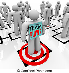 Team Player Targeted in Organizational Org Chart Teamwork -...