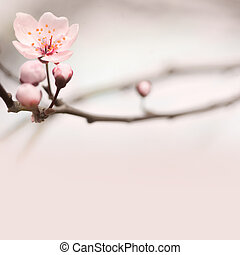 Spring header with copy space. - Spring header with with...