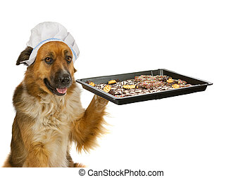 Dog with a chef?s hat is offering christmas cakes