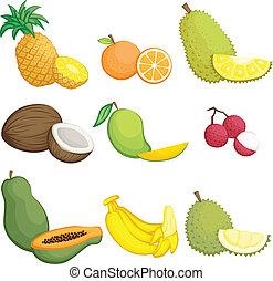tropicais, frutas, ícones