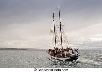Whale watching at Skjaacute;lfandi Bay Iceland - Sailing...