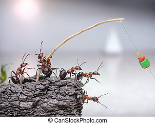 team of anglers ants fishing at sea, teamwork - team of...