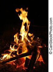 Camp Fire - Hot flames and glowing embers of a camp fire
