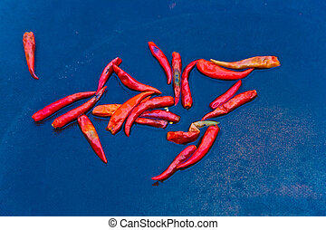 fresh chili pepper in different colors at the herb market -...