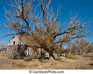 Old Western Ranch