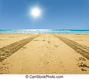 tractor tracks on the golden sand leading into the sea