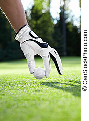 Golfing - Hand in glove puts the golf ball on the field