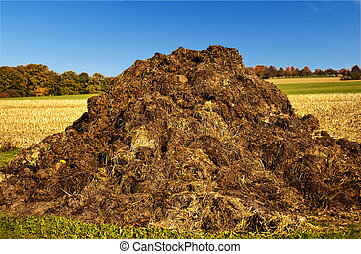 dung heap - dung hill with a blue sky