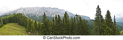 Panorama background in Carpathians Beautiful mountains and...