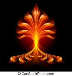 fogo, flor
