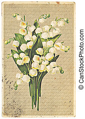 lily of the valley - vintage postcard with illustration of...