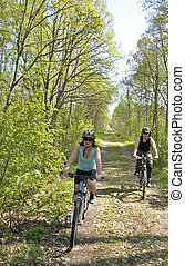 Bikers at forest road in spring
