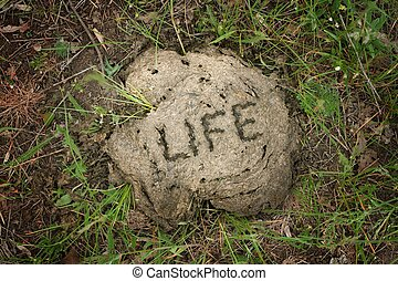 Life is... - Shit happens, life is shit.