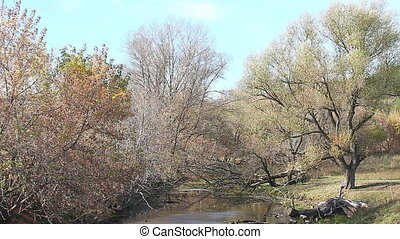 autumn landscape. panoraming