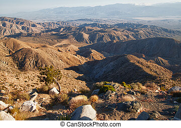 vista point view of the Joshua Tree National Park