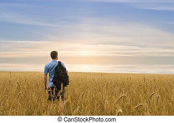 Man in yellow wheat meadow.